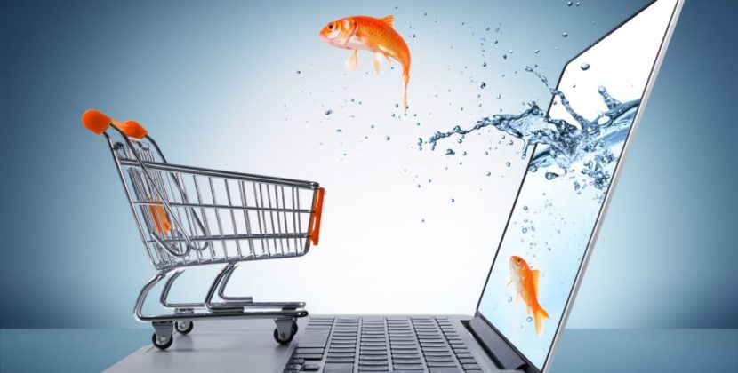 How e-commerce can compete for informational queries through optimizing for intent